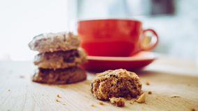 Hot cocoa and chocolate chips cookies. Stock Photo