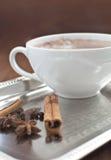 Hot cocoa with cinnamon Stock Photos