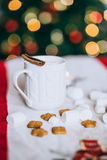 Hot cocoa with cinnamon stick, marshmallows and cookies Stock Images