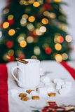 Hot cocoa with cinnamon stick, marshmallows and cookies Stock Photos