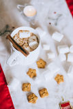 Hot cocoa with cinnamon stick, marshmallows and cookies Stock Photography