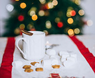 Hot cocoa with cinnamon stick, marshmallows and cookies Royalty Free Stock Photos