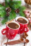 Hot cocoa drink Royalty Free Stock Photo