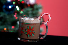 Hot Cocoa and Holiday Tree. Mug of hot cocoa with marshmellows in front of christmas tree Stock Photos