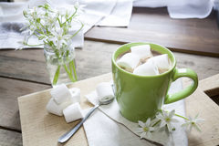 Hot cocoa with marshmallows in green cup Royalty Free Stock Photography