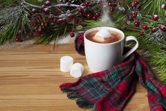 Hot Cocoa with Marshmallows Royalty Free Stock Photo