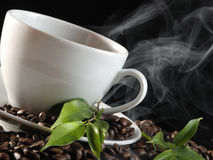 Free Hot Coffee Stock Photography - 10941502