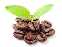 Free Hot Coffee Stock Photo - 15751260