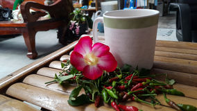 Hot coffee  azalea flower and chilli on chair. Bamboo chair in house spicy cooking Royalty Free Stock Images