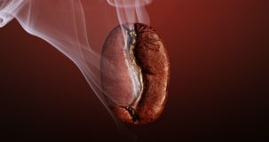 Bean of coffee with a smoke. Hot coffee bean smoked in a deep dark background stock video footage