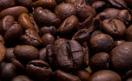 Hot coffee beans. Close-up photo of hot roasted coffee beans Royalty Free Stock Images