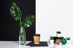 Hot coffee in brown paper cup and green leaves in glass bottle put on table with black and white wall on background Royalty Free Stock Image