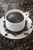 Hot coffee cup on the beans. Close up Stock Photos