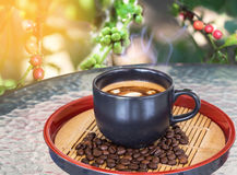 Hot coffee cup with steam smoke on table Royalty Free Stock Photo