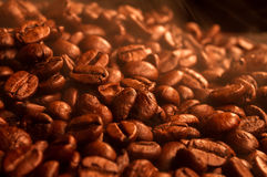 Hot coffee grains. Fragrant hot coffee grains close up Royalty Free Stock Photography