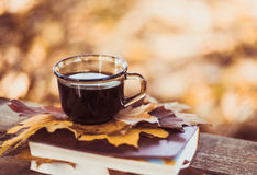 Hot coffee and red book with autumn leaves on wood background - seasonal relax concept. Hot coffee and red book with autumn leaves on wood background Stock Photos
