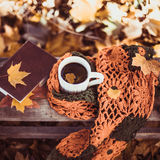 Hot coffee and red book with autumn leaves on wood background - seasonal relax concept Stock Images