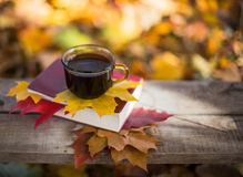 Hot coffee and red book with autumn leaves on wood. Seasonal relax concept with fallen leaves and hot drinks Stock Image