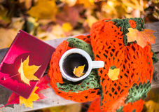 Hot coffee and red book with autumn leaves on wood. Seasonal relax concept with fallen leaves and hot drinks Royalty Free Stock Image