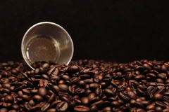 Hot coffee roasted Stock Images