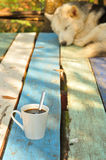 Hot coffee with sleeping dog Royalty Free Stock Images