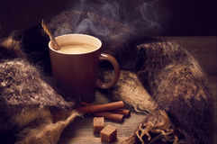 Hot coffee in warm scarf Royalty Free Stock Photos