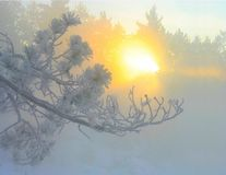 Hot and cold. Taken at secord rd sudbury ontario it was -35c Royalty Free Stock Photography