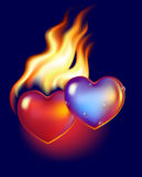 Hot and cold hearts. Ice heart melt in fire of hot red heart Royalty Free Stock Image