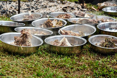 Hot cooked buffalo meat in the plates at the funeral ceremony in Tana Toraja Royalty Free Stock Image