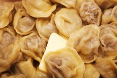 Hot cooked dumplings Stock Image