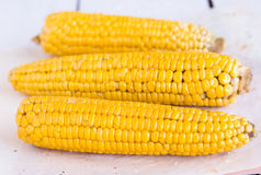 Hot corn on the cob on a white background, horizontally Royalty Free Stock Photography