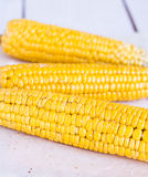 Hot corn on the cob on a white background Royalty Free Stock Images