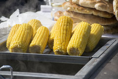 Hot corn for sale Royalty Free Stock Image