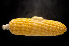 Hot corn with steam. And melting butter on top royalty free stock photos