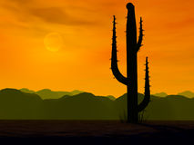 Hot country. Desert sunset with cactus silhouette Stock Photo