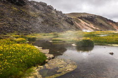 Hot creek in the valley Landmannalaugar, Iceland Stock Images