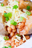 Hot and crispy baked potato. Stuffed with baked beans, cheddar cheese and sliced spring onions Royalty Free Stock Photos