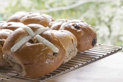 Hot Cross Buns on a Rack Royalty Free Stock Photos