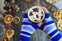 Hot cup of coffee in hands Royalty Free Stock Photo