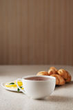 Hot cup of tea Stock Images