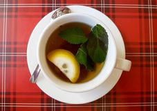 Hot cup of tea whith lemon and mint royalty free stock image