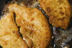 Hot cutlets Royalty Free Stock Image