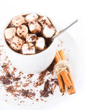 Hot dark chocolate with mini marshmallow  and cinnamon in a whit Stock Photography
