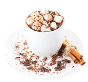Hot dark chocolate with mini marshmallow  and cinnamon in a whit Royalty Free Stock Image