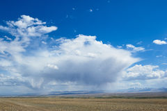 Hot day in Altai steppe Stock Image