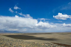 Hot day in Altai steppe Royalty Free Stock Photos