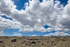 Hot day in Altai steppe Royalty Free Stock Photo