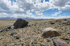 Hot day in Altai steppe Stock Photos