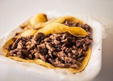 Hot delicious  beef taco Royalty Free Stock Photography