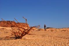 Hot desert in africa Stock Photo
